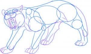 dessiner un tigre - etape 3