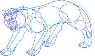 dessiner un tigre - etape 4