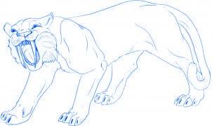 dessiner un tigre - etape 5