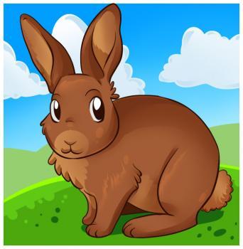 dessin de lapin termine terminé