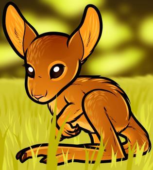 dessin de kangourou termine terminé