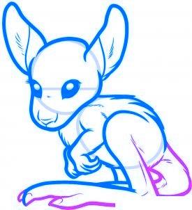 dessiner un kangourou - etape 6