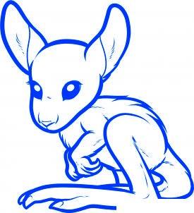 dessiner un kangourou - etape 7
