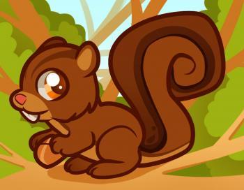 dessin ecureuil termine terminé