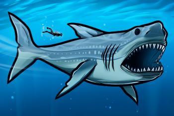 dessin de requin termine terminé