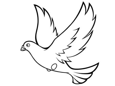 dessiner un oiseau type Colombe - etape 7